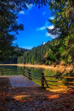 ramp on mountain Lake near  forest