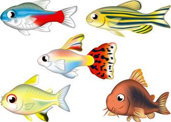 入門熱帯魚5匹(ネオンテトラ・グッピー・コリドラス・ゼブラダニオ・レモンテトラ)