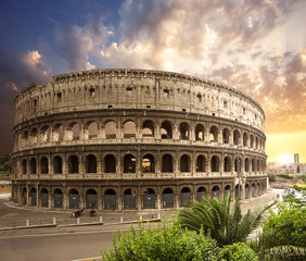 Wall Mural - Coliseum. Rome. Italy.