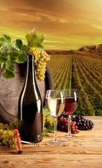 Foto auf Leinwand Weinberg Wine in vineyard