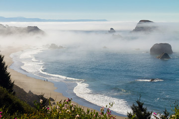 Aluminium Prints Sea morning fog along coast at Brookings, Oregon