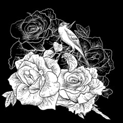 Beautiful Rose Background with Birds