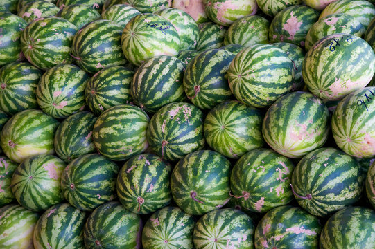 Pile of watermelons