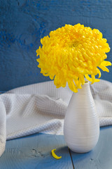 Yellow camomile in the white vase