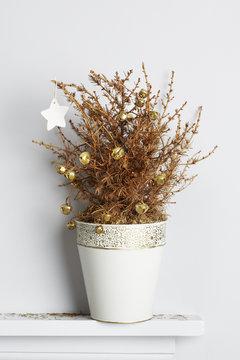 Dead christmas pine tree on mantle piece
