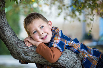 Portrait d'un petit garçon dans un arbre