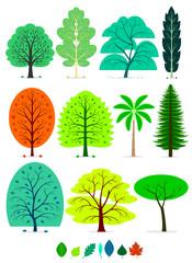 11 Various of Trees in Simplified Flat Vector Cartoon