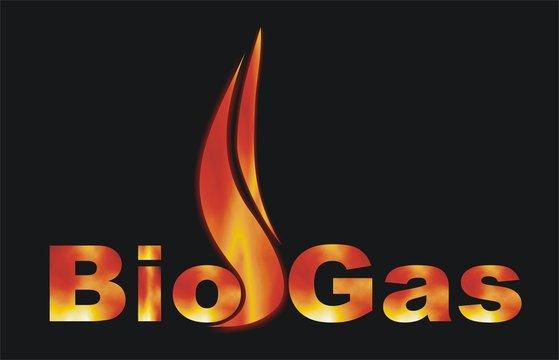 Bio Gas fire flame