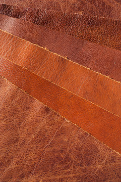 brown leather upholstery samples