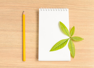 Notebook and wooden pencil and green leaf