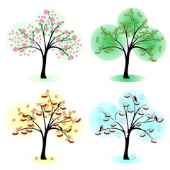 Tree at different times of the year.Vector illustartion