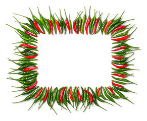 Rectangular red and green bird chili frame