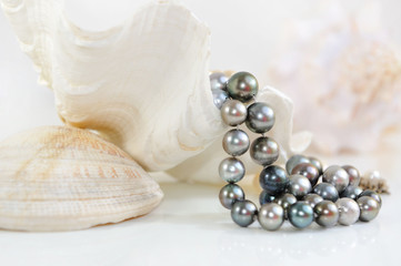 Background of the big white sea shells and black pearls.