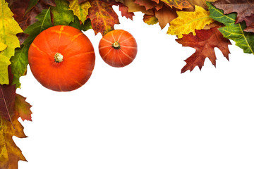 Two pumpkins with leaves isolated on white