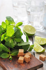 Ingredients  for coctail mojito