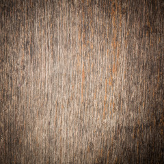 texture of bark wood background