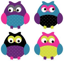 Adorable Owl Set