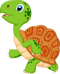Cute turtle cartoon running