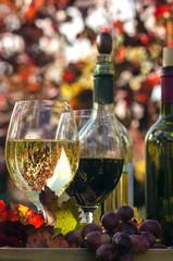 Weinprobe im Wingert