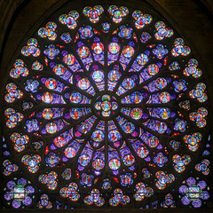 Fototapete - Rose stained glass window in the cathedral of Notre Dame, Paris