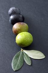 Fototapete - Processo di maturazione olive
