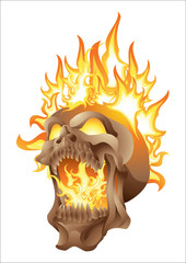 skull in flames isolated