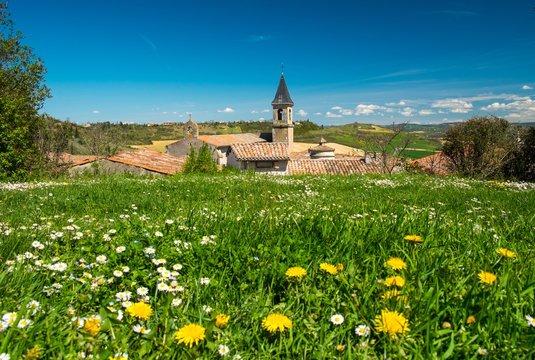 Flower field in front of Lautrec village, France