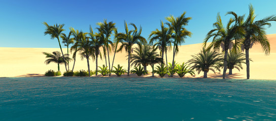 Oasis in the desert. Panoramic view.