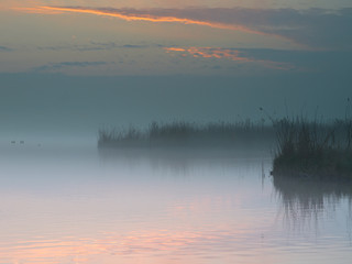 Wall Mural - misty lake