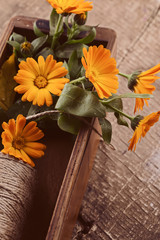 Autumnal flowers in box on wooden table. Postcard.