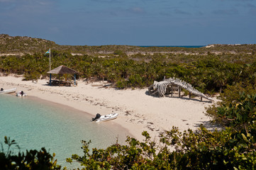 Warderick Wells Bahamas