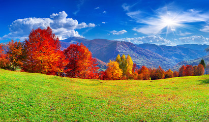 Wall Mural - Colorful autumn panorama of the mountains