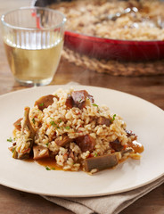 Dish of artichokes and mushrooms rice