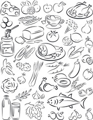 vector illustration of healthy food collection