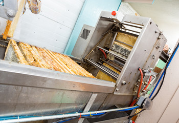 Honey Extraction Plant In Factory