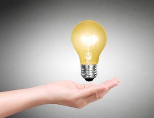 Ideas bulb light on hand