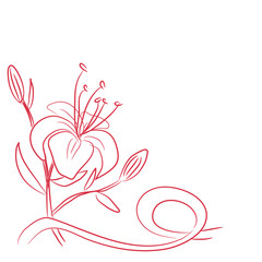 sketch of a flower and ribbon
