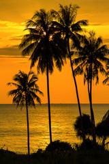 Beautiful sunset, Thailand.