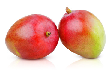 Two ripe mango fruit isolated on white with clipping path