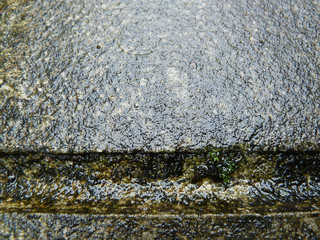 Wet dirty grey paving slab after the rain