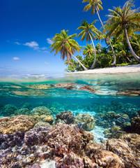 Fototapete - Tropical island