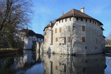 Hallwyl castle on the lake Hallwil