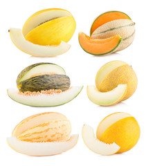 collection of 6 different melon images