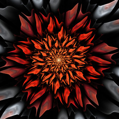 Fototapete - Red abstract flower