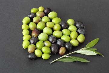 Fototapete - Cuore di olive e ramoscello di ulivo 2