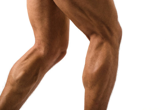 Close up on muscular bodybuilder male legs
