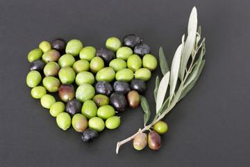 Fototapete - Cuore di olive e ramoscello di ulivo