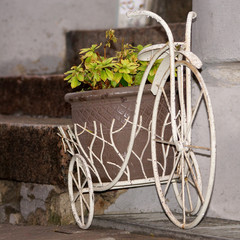 decorative bike with a green plant in a pot