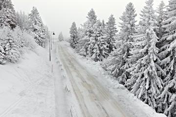 Wall Mural - Snowy Highway