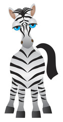 Cute Zebra with Blue Eyes Vector Illustration